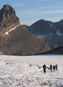 wapta icefields