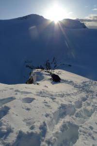 isolated peak