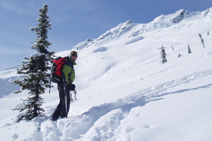 Avalanche Training Rogers Pass
