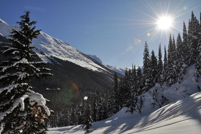 Rogers Pass Ski Guide Ski Touring And Backcountry Skiing