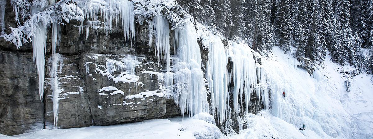 photo credit: Banff & Lake Louise Tourism/Noel Hendrickson